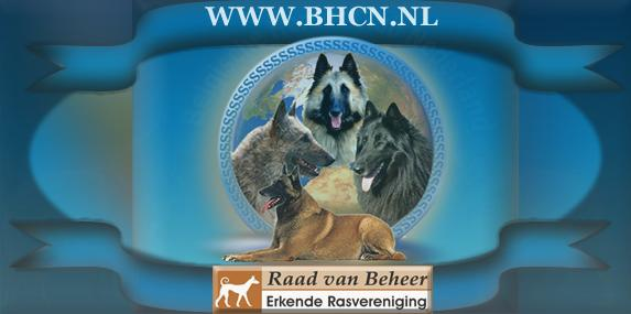 bhcn-logo